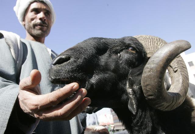 伊斯蘭教 – 宰牲節