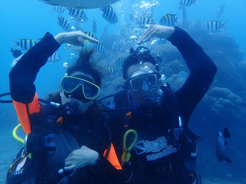 【Niceday x 台灣潛水TDC】到墾丁和台灣潛水來一場海底約會吧~