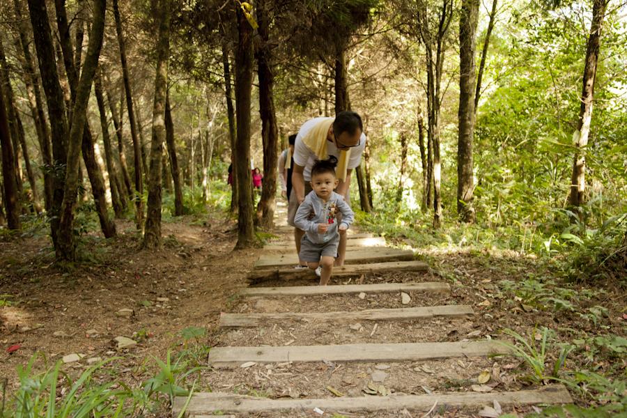 造訪苗栗南庄 Day 2:直奔加里山的懷抱