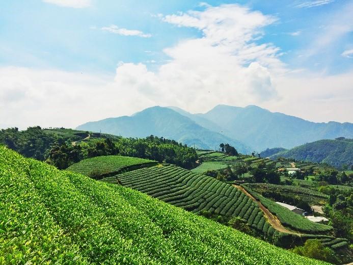 從旅程中享受自然純樸與感動—瑞峰太和休閒農業區、茶山村