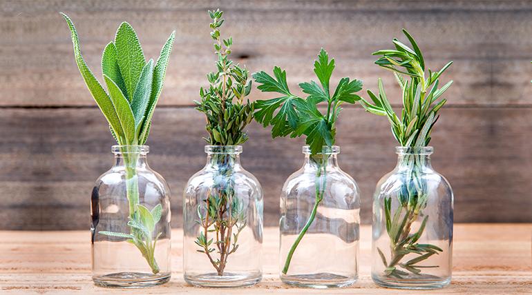 夏日香氛舒壓-天然精油的 8 種妙用
