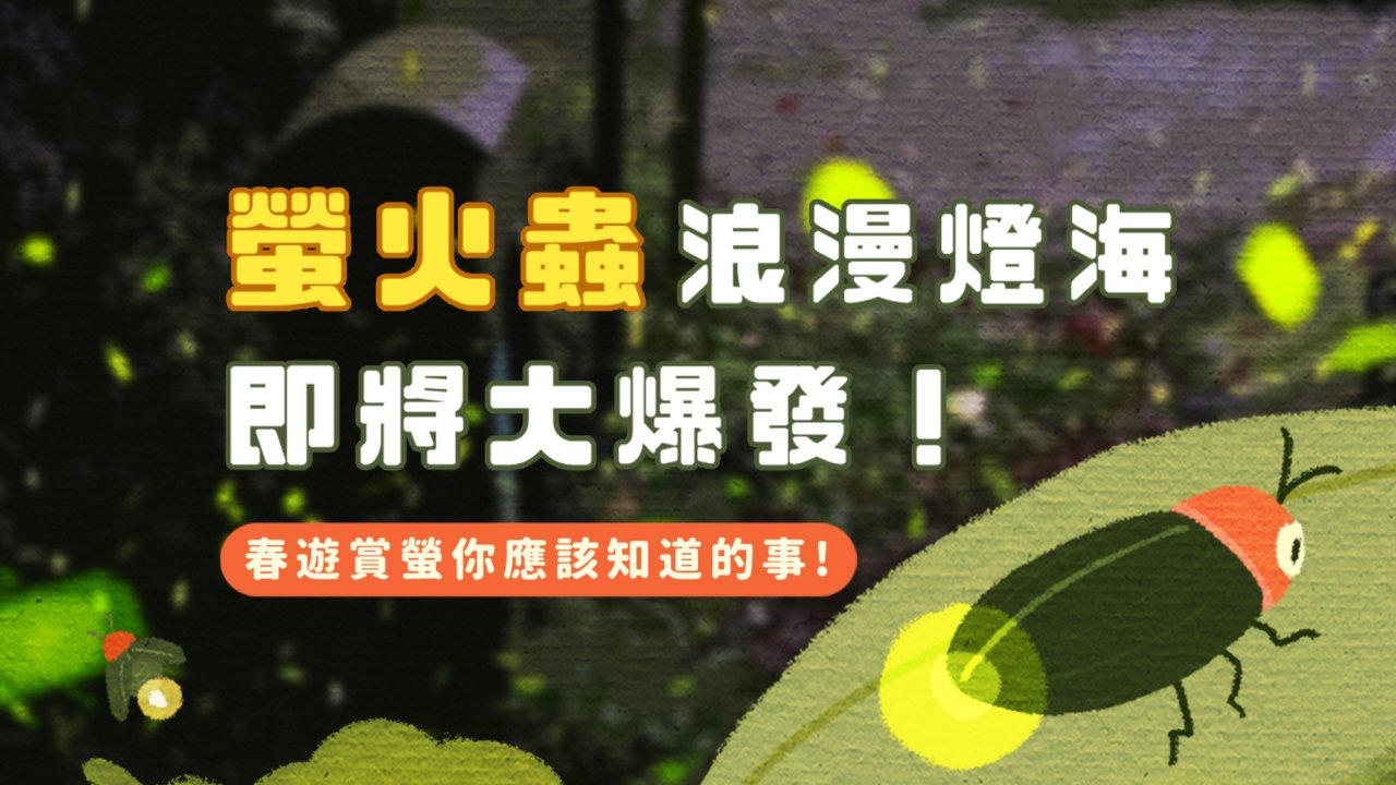 【春天賞螢】跟著火金姑去旅行!全台螢火蟲熱點推薦