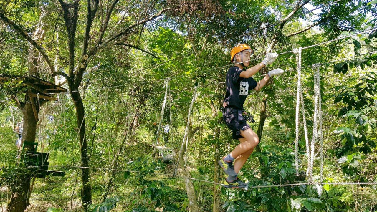 【花蓮壽豐】來花蓮當隻野猴子吧!空中樹頂探險