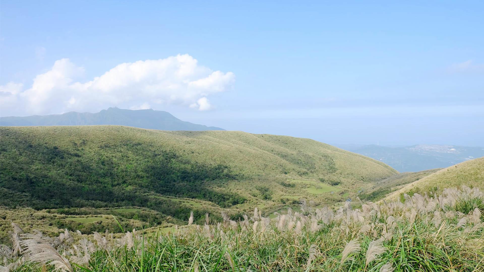 【絕美登山路線推薦】6 款台灣山林步道,帶你走入自然秘境!